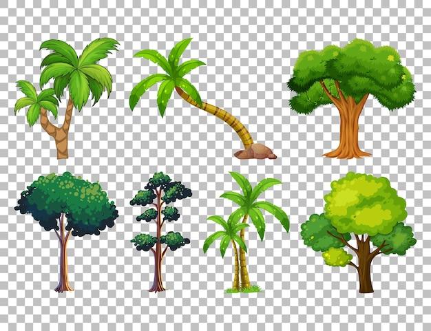 Set di albero su trasparente Vettore gratuito