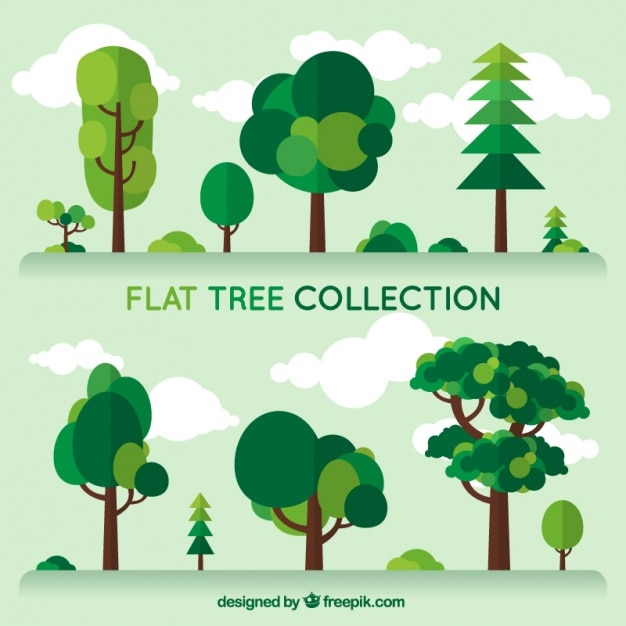 set trees of different kind in flat design free vector