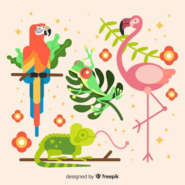 Set of tropical animals: parrot, frog, flamingo, chameleon. flat style design Free Vector