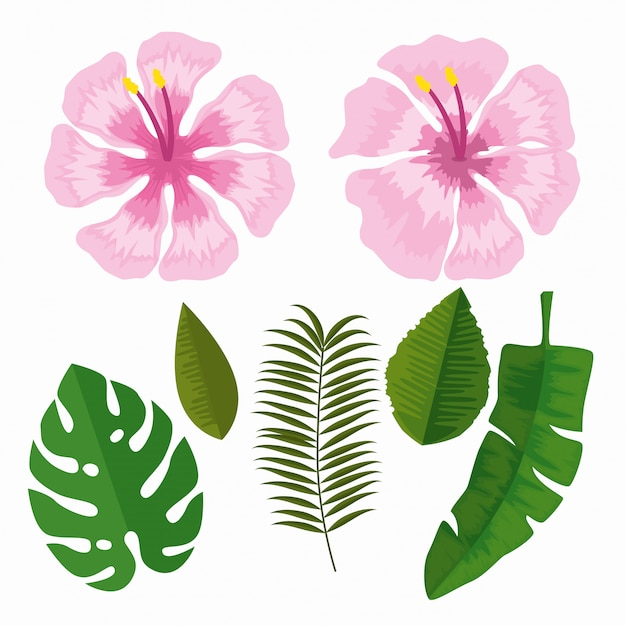 Set tropical flowers with branches leaves Free Vector