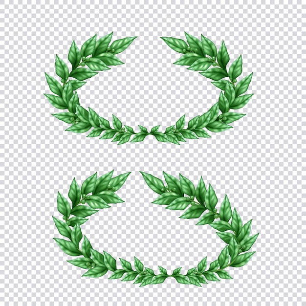 Set of two isolated green laurel wreaths in realistic style on transparent background illustration Free Vector