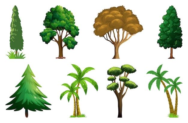 Insieme di piante e alberi di varietà Vettore gratuito