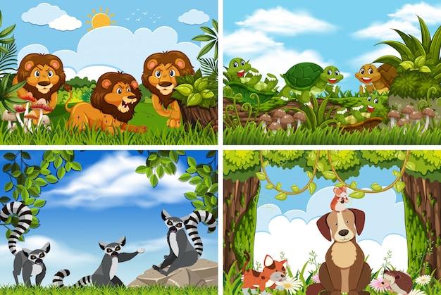 Set of various animals in nature scenes Premium Vector