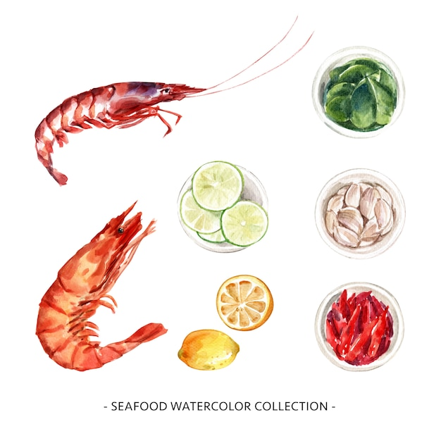Set of various isolated seafood watercolor illustration for decorative use. Free Vector