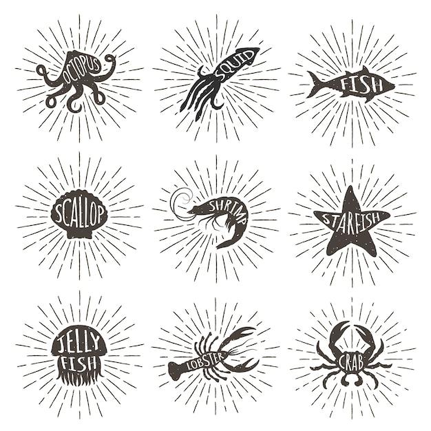 Set of vintage hand drawn sea animals with sun rays. Premium Vector