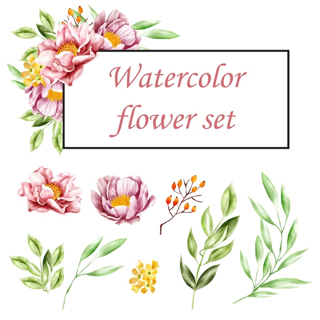 Set of watercolor floral Premium Vector