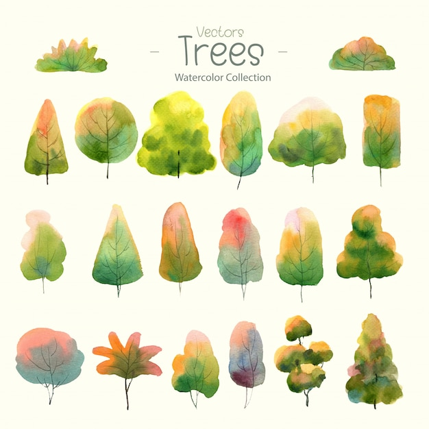 Set of watercolor trees for design forest Premium Vector