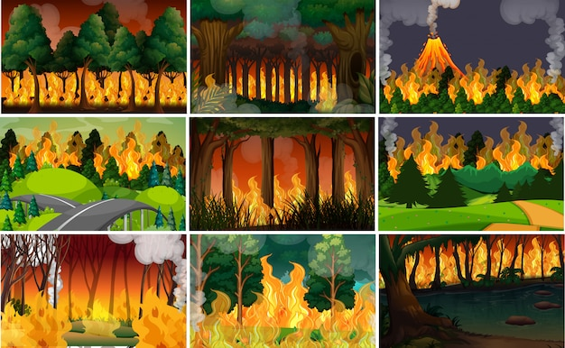 Set of wild fire background Free Vector