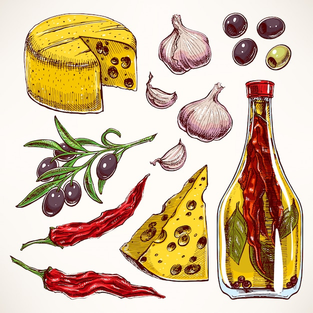 カラフルなスパイス、チーズ、野菜をセットします。ニンニク、オリーブ、唐辛子。手描きイラスト Premiumベクター