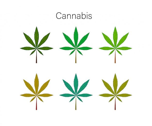 自然な大麻化粧品で設定します。漫画のスタイル。図。 Premiumベクター