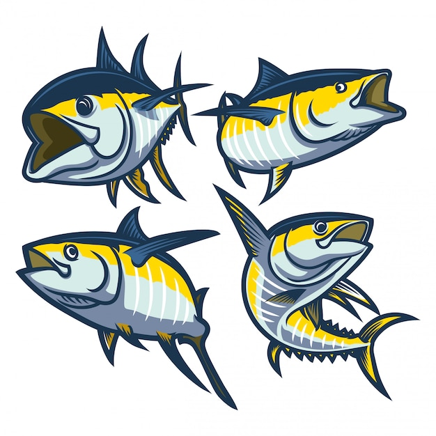 Set of yellow fin tuna illustration isolated Premium Vector