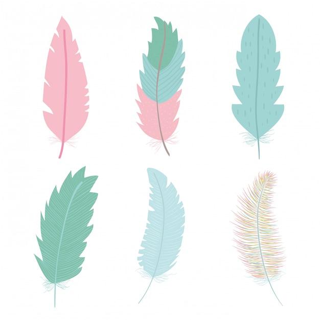 Симпатичные богемные перья икона set Бесплатные векторы