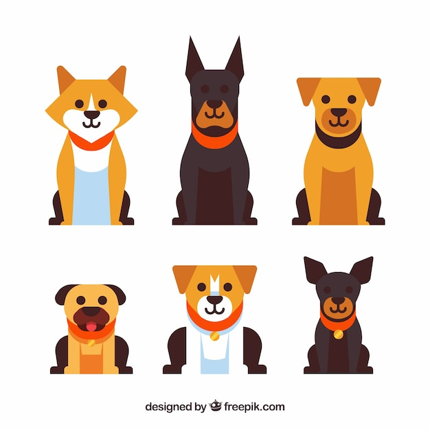 Several cute dogs in flat design
