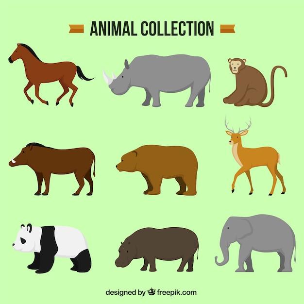 Several decorative animals in flat design Free Vector