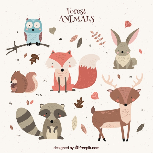 photo regarding Free Printable Woodland Animal Templates identified as Woodland Pets Vectors, Visuals and PSD data files No cost Down load
