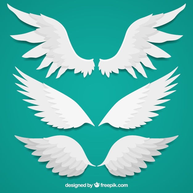 Several wings in flat design Free Vector