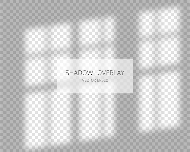 Shadow overlay effect. natural shadows from window  on transparent background.  illustration. Premium Vector