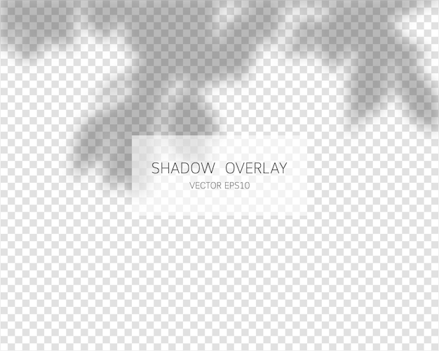 Shadow overlay effect. natural shadows isolated on transparent background.   illustration. Premium Vector