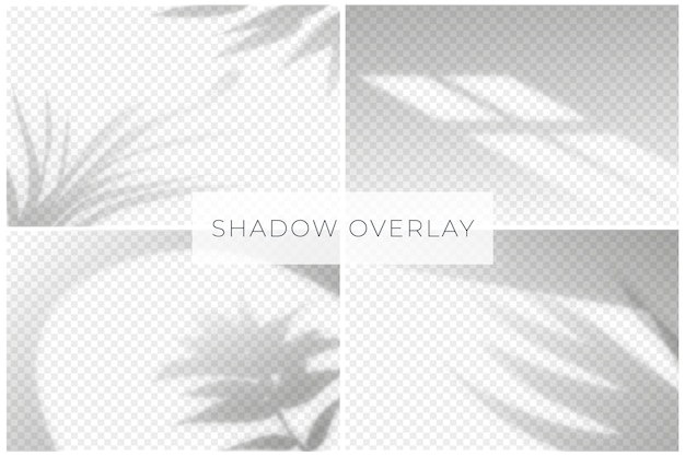 Shadow overlay effect with transparent background Free Vector