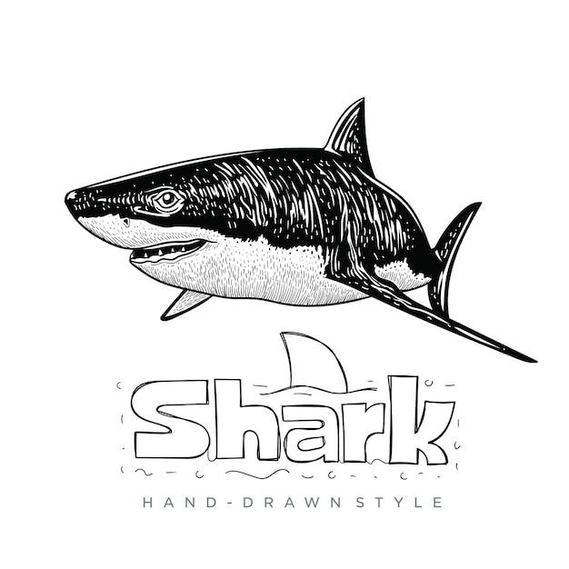 サメ手描き動物イラスト Premiumベクター