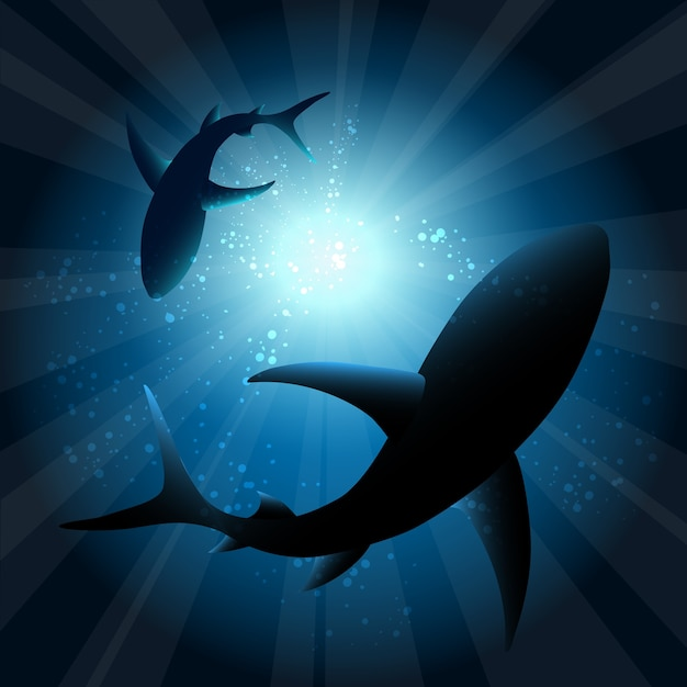 水中のサメ。海の魚、動物の自然の生活、水泳の野生生物、 無料ベクター