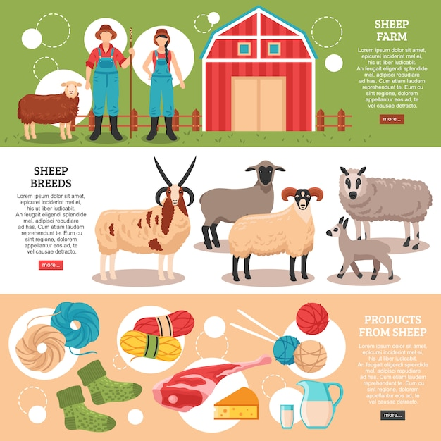 Плоские баннеры овцеводства Бесплатные векторы