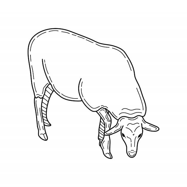 Стиль эскиза овец. рисованной иллюстрации красивых черно-белых животных. штриховой рисунок в винтажном стиле. Premium векторы
