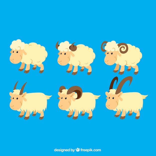Sheeps and goats illustration Free Vector