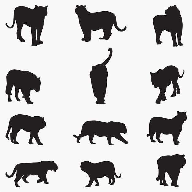 Силуэты сибирских тигровых кошек Premium векторы