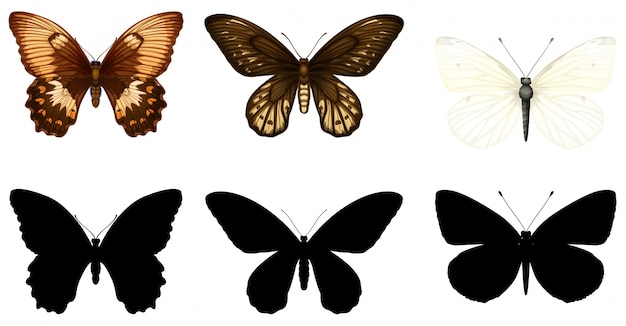 Silhouette, color and outline version of butterflies Free Vector