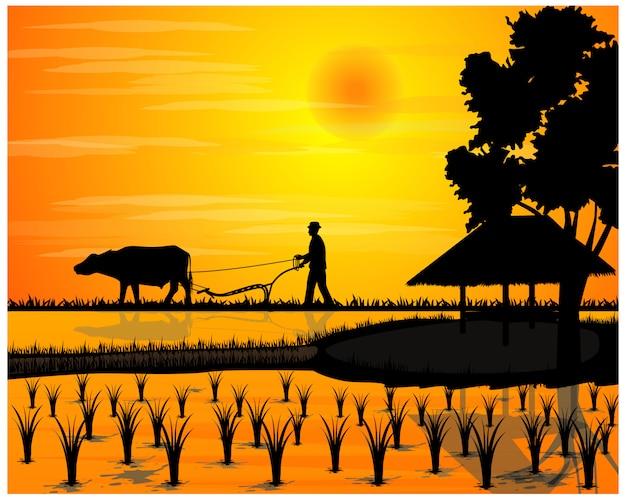 Silhouette farmer plow in paddy field vector design Premium Vector