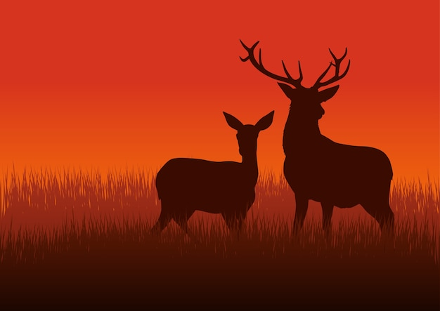 Silhouette illustration of a deer and doe on meadow Premium Vector