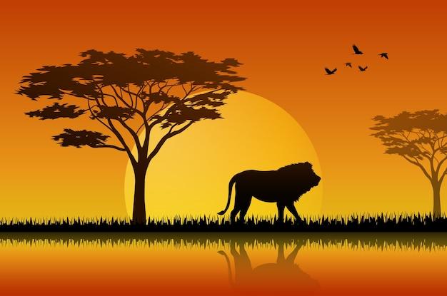 Silhouette of lion at lake in savanah Premium Vector