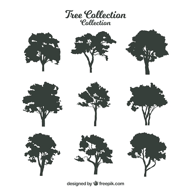 Silhouette of trees with variety of designs Free Vector