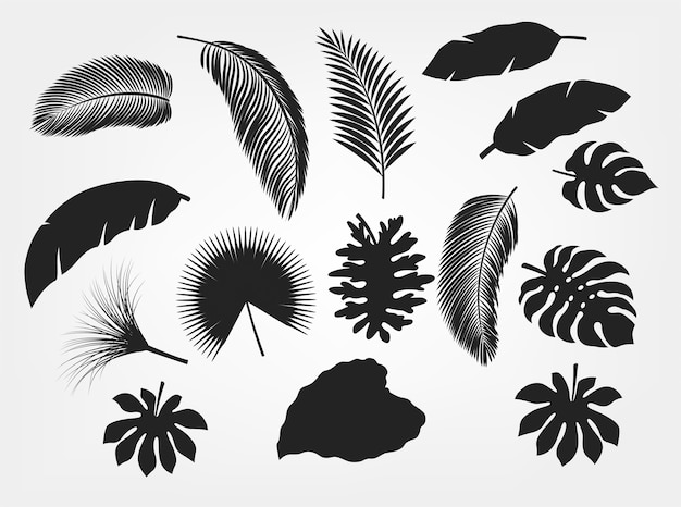 Silhouette tropical leaves set isolated Premium Vector