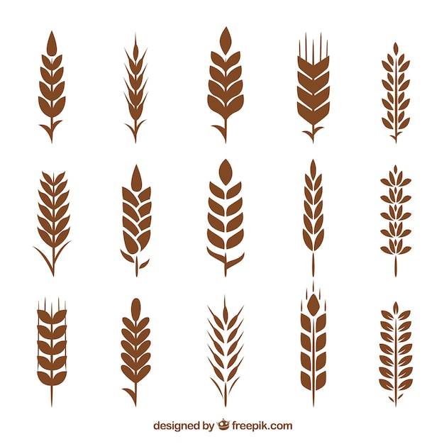 Silhouette wheat collection Free Vector