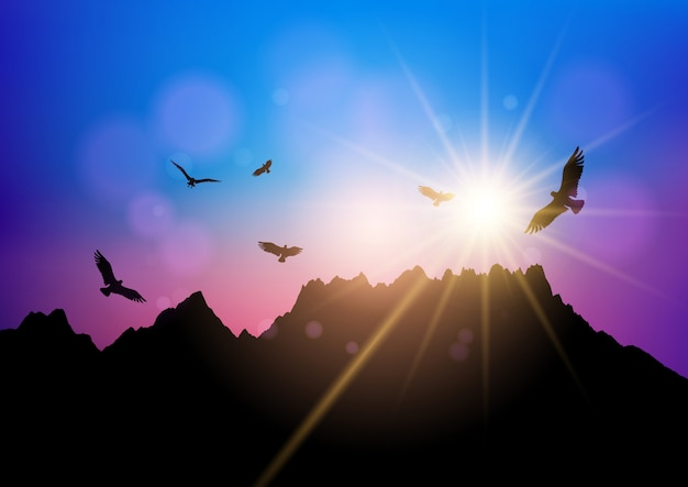 Silhouettes of birds flying against sunset\ sky