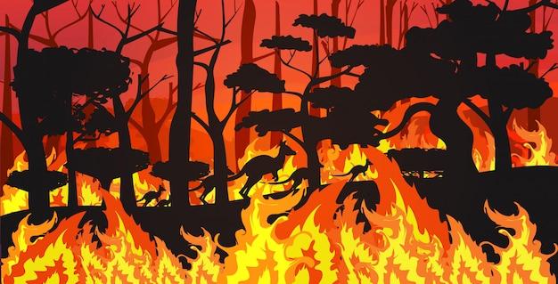 Силуэты кенгуру, бегущие от лесных пожаров в австралии животные, умирающие в лесном пожаре лесной пожар горящие деревья концепция стихийного бедствия интенсивное оранжевое пламя горизонтальное Premium векторы