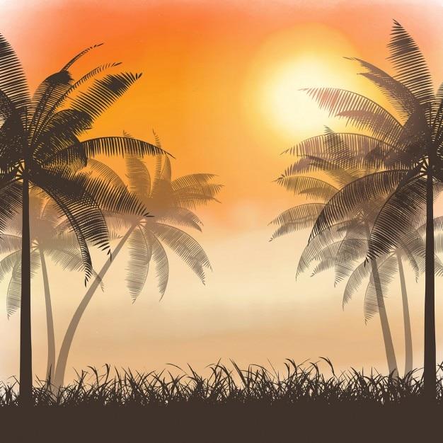 سایه ها از درختان نخل در غروب آفتاب آبرنگ