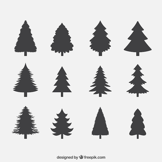 Silhouettes of pines collection Premium Vector