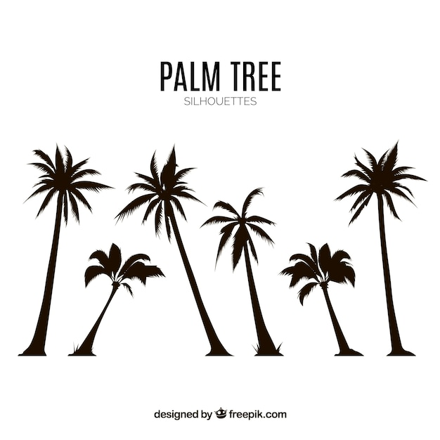 silhouettes set of palm trees vector free download rh freepik com free vector palm tree graphics free palm tree vector silhouette