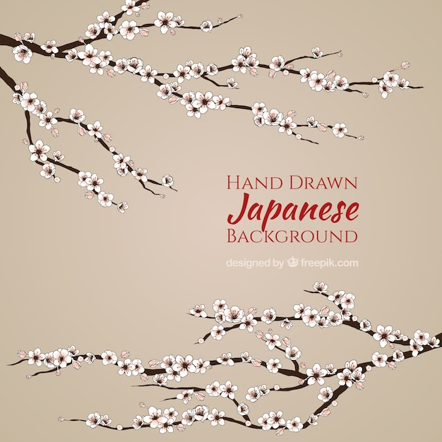 simple japanese background with hand drawn cherry blossom vector