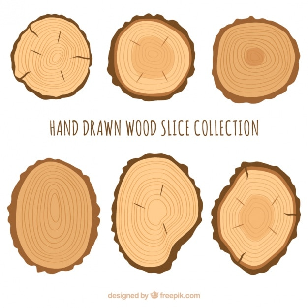 Six wood slices vector free download for How to cut wood slices