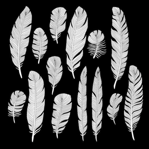 Sketch hand drawn birds feathers vector set Premium Vector