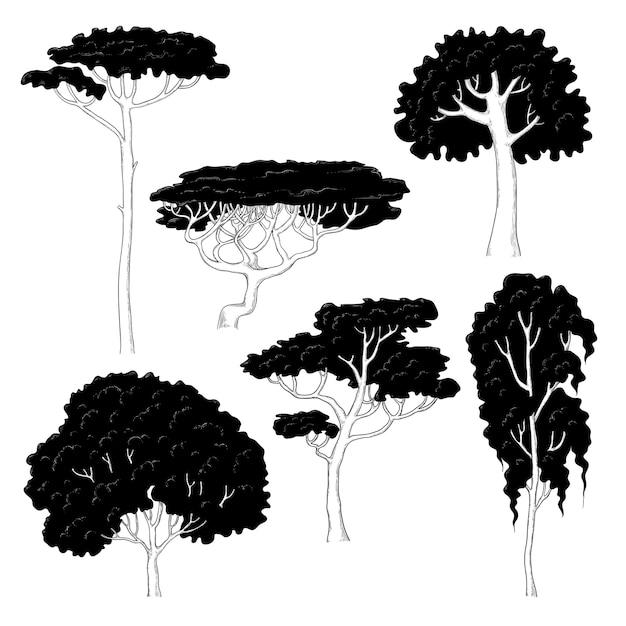 白い背景の上のさまざまな木の黒いシルエットのイラストをスケッチします。松、白樺、オーク、アカシア、その他の植物種。 Premiumベクター