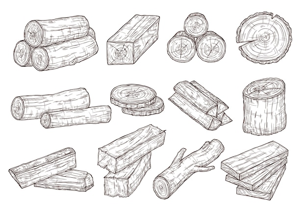 Sketch lumber. wood logs, trunk and planks. forestry construction materials hand drawn isolated set. illustration wood timber, trunk tree cut Premium Vector
