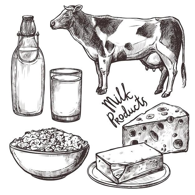 Sketch milk products set Free Vector