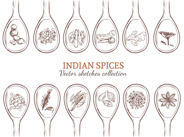 Sketch organic indian spices set Free Vector