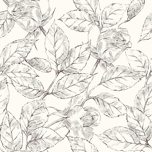 Sketch roses pattern Premium Vector