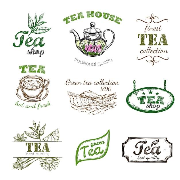 Insieme di marchio del tè di schizzo Vettore gratuito